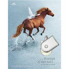 Hermes Voyage D' Hermes edt women