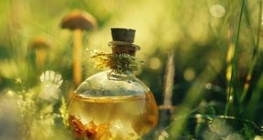 Влияние запахов на преодоление стресса